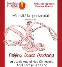 Beijing Dance Academy, singura instituţie de învăţământ superior de dans din China vine la Arad!