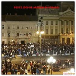 UPDATE! GALERIE FOTO! Peste 500 de arădeni în fața Primăriei din Arad la ora 19.00 ! ACESTA NU ESTE GUVERNUL MEU, este unul din mesajele scrise pe pancarte !