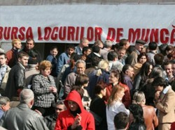 AJOFM ARAD organizează  Bursa locurilor de muncă pentru femei