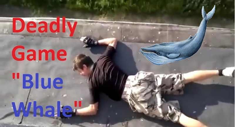 Balena Albastră, jocul care-i face pe tineri să se sinucidă ! Feriți adolescenții de acest joc ! Peste 130 de victime până acum