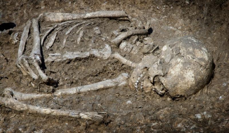 Descoperire macabră într-o localitate din Arad
