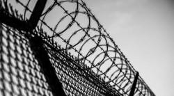 Ungaria se protejează de refugiaţi cu un gard electrificat!