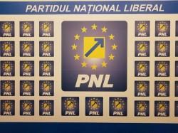 Alegerile interne ale PNL Arad vor avea loc în luna aprilie