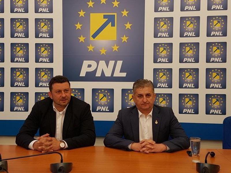 Abrudan se retrage, Pistru intră în cursa pentru preşedenţia PNL Arad