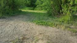 Impecabil ! În urma celor care au petrecut de 1 mai la Pădurea Ceala, n-au rămas gunoaie ! Saci întregi au fost adunați frumos !