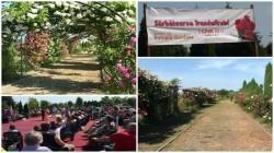 Paradisul trandafirilor la doar câtiva km de Arad