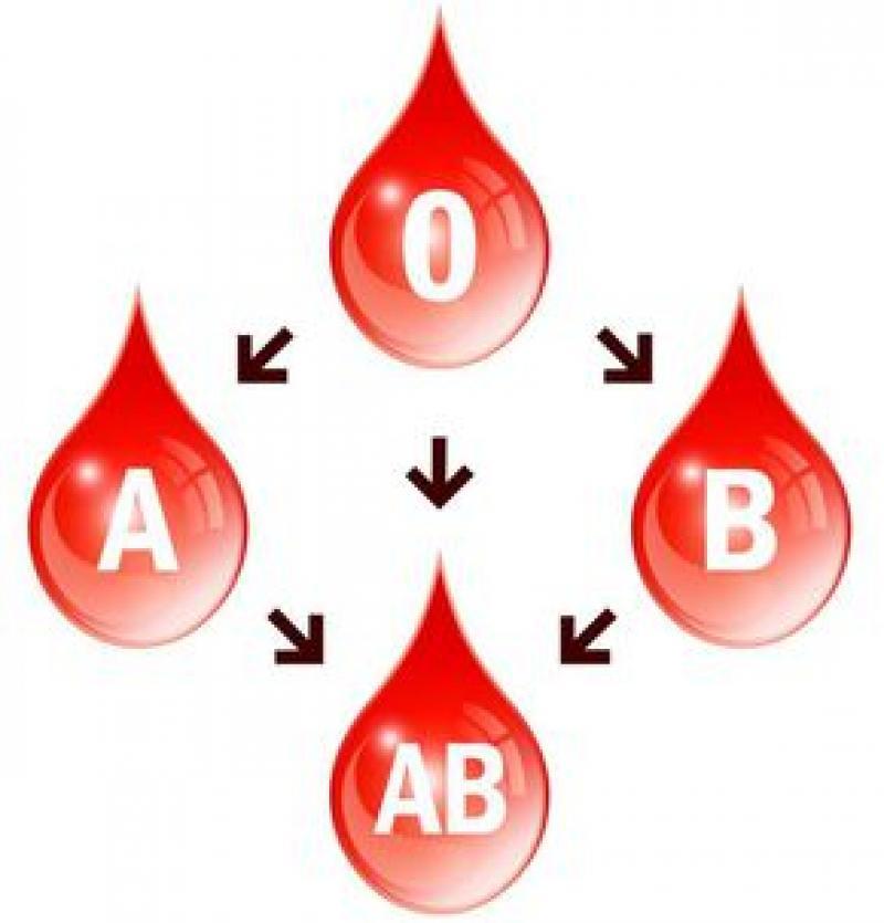 Spune-mi ce grupă sanguină ai și AFLI la ce boli ești expus !
