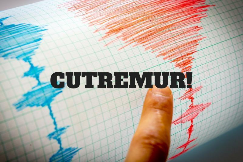 Cutremur în această dimineață în România !