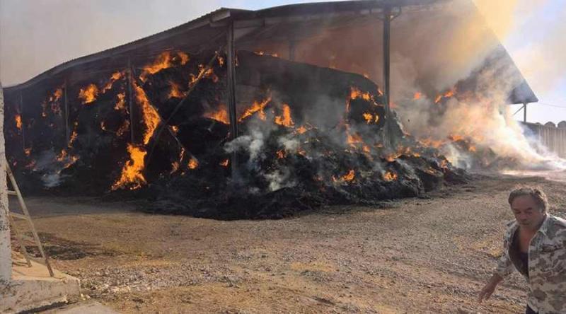 INCENDIU PUTERNIC ! O fermă de la vaci a luat foc vineri dimineața !