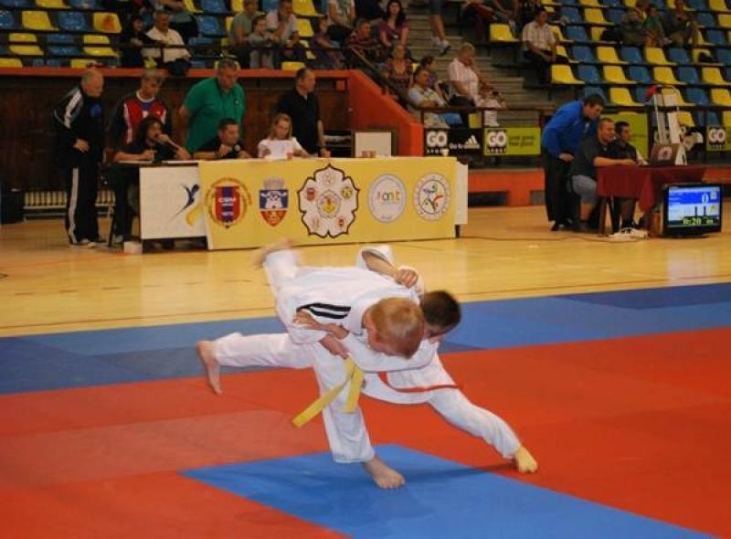 Aradul va găzdui Cupa Europeană de Judo pentru juniori