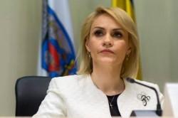 Firea vrea hotel, cimitir şi chiar un serviciu de ambulanţă pentru câinii şi pisicile din Bucureşti