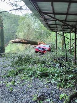 Furia naturii s-a abătut asupra staţiunii Moneasa! Mai multe maşini au fost distruse de copacii puşi la pământ!