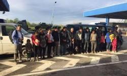 Alţi şaptesprezece irakieni şi iranieni prinşi pe câmp încercând să treacă în Ungaria