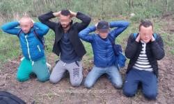 Patru cetățeni din Libia şi Algeria opriți la frontiera arădeană