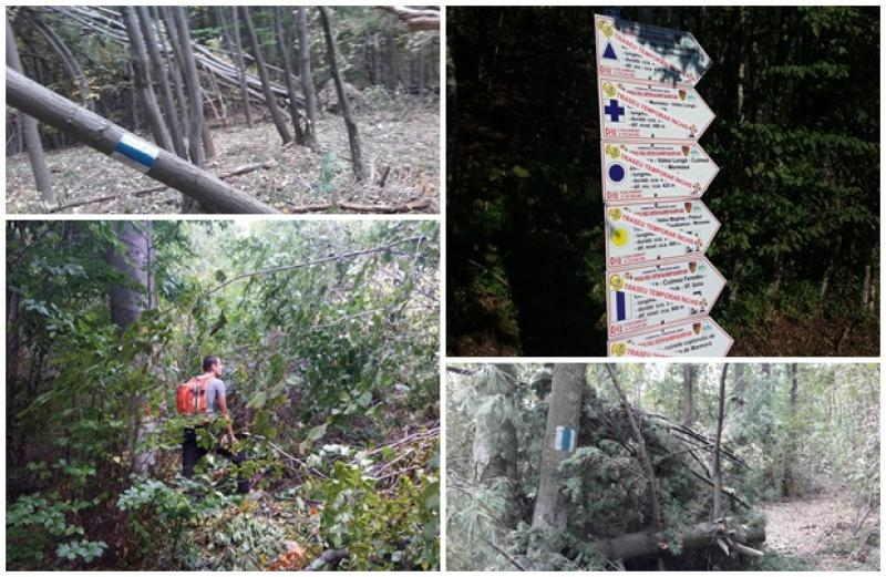 Traseele montane din Arad, afectate de fenomenele meteo