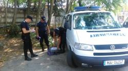 Ţigări de contrabandă confiscate de jandarmii arădeni din zona pieţei Fortuna