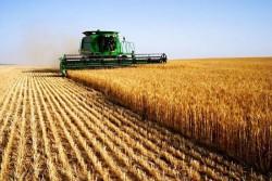 Ministerul Agriculturii a lansat un proiect de lege dedicat fermierilor. Vezi care sunt schimbările!