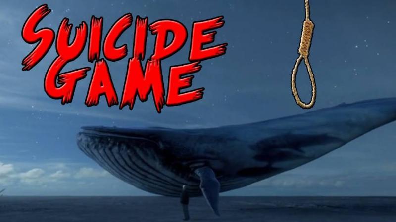 """Campanie de informare a arădenilor privind riscurile asociate jocului """"Balena albastră"""""""