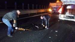 Accident tragic pe Autostrada A1 la ieşirea din Arad! doi răniţi şi un mort!