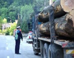 Transport ilegal de lemne, depistat de polițiști