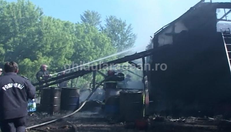 Un incendiu de proporţii a mistuit o cabană din pădurea Vladimirescu (Galerie Foto)