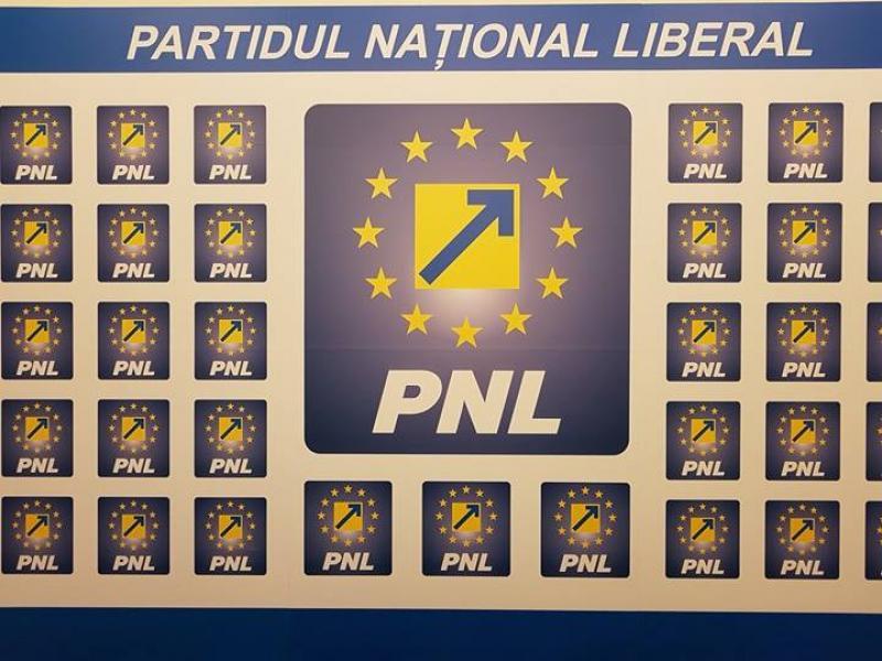 BPJ al PNL Arad va stabili săptămâna viitoare delegații pentru Congres!