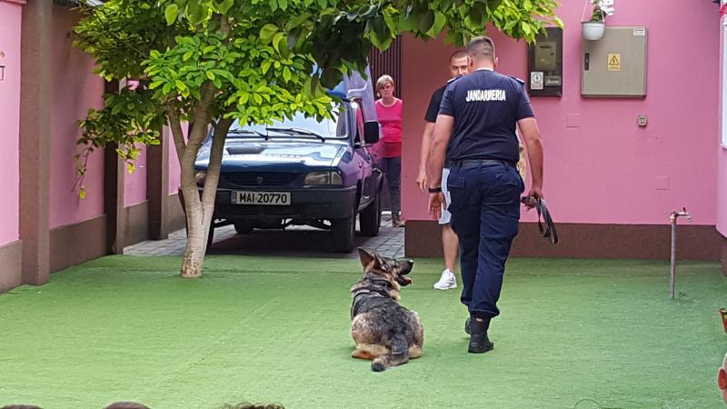 Jandarmii arădeni prezenți la o grădiniță din Arad !