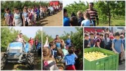 """Claudia Boghicevici, vicepreşedinte CJ Arad: """"Orientăm copiii spre natură şi respectarea mediului"""""""