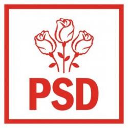 PSD Arad nu poate tolera manevrele ilegale şi limbajul mizerabil al primarului Falcă
