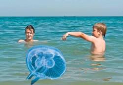 ATENȚIE ! Ce pericole se ascund în apele Mării !
