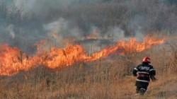 """Apelul ISU Arad către populaţie: """"să se renunţe la curăţarea terenurilor prin incendiere"""""""