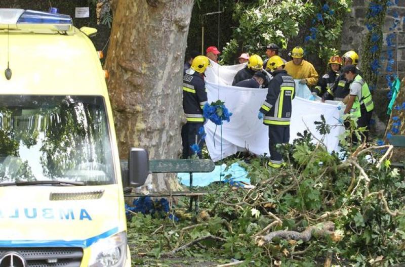 VIDEO- Un copac s-a prăbuşit peste o mulţime de pelerini adunaţi la sărbătoarea Adormirii Maicii Domnului