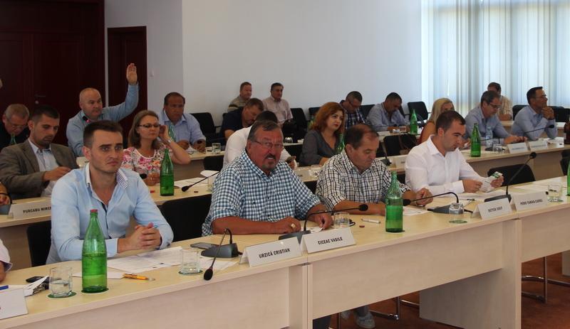 """Drumul Măderat-Agrişu Mare-Arăneag, """"condamnat"""" la paragină de consilierii PSD-ALDE"""