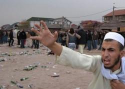 Meleşcanu scapă porumbelul! Guvernul PSD-ALDE a făcut o ofertă pentru relocarea în România a 1.942 de refugiaţi