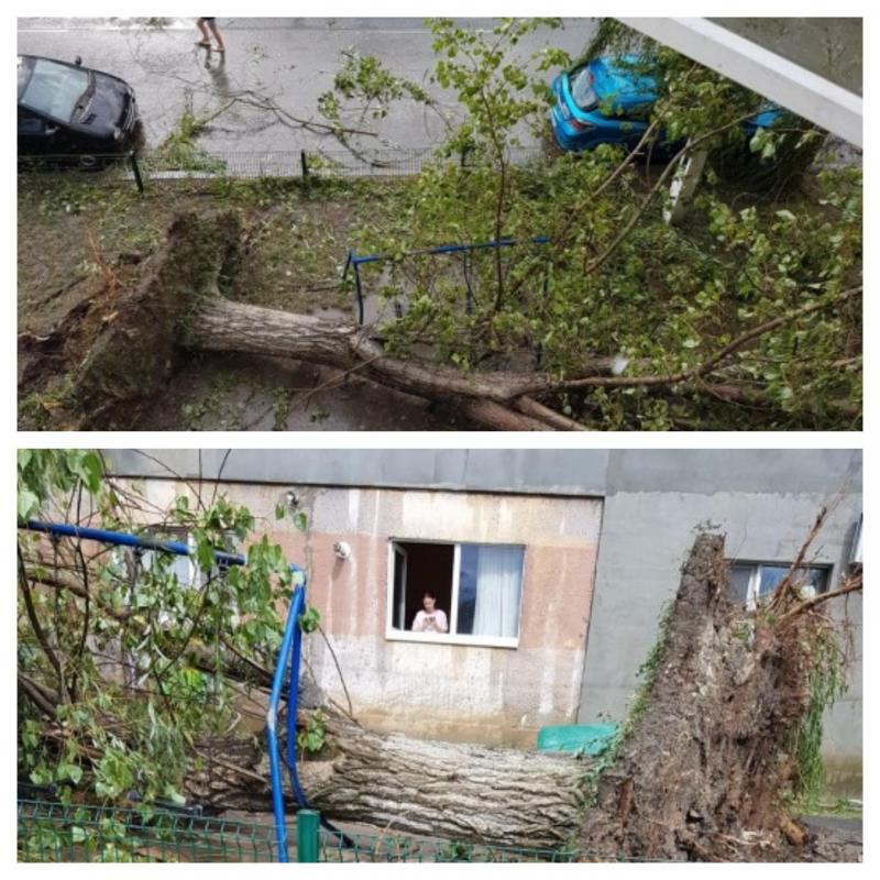 BILANȚ TRAGIC în urma furtunii care a avut loc duminică în vestul țării !