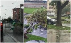 Furtuna care s-a abătut peste Arad a făcut prăpăd în oraş!