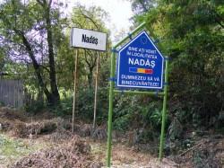 Judecătoria Balș admite cererea de revizuire depusă în dosarul Nadăș