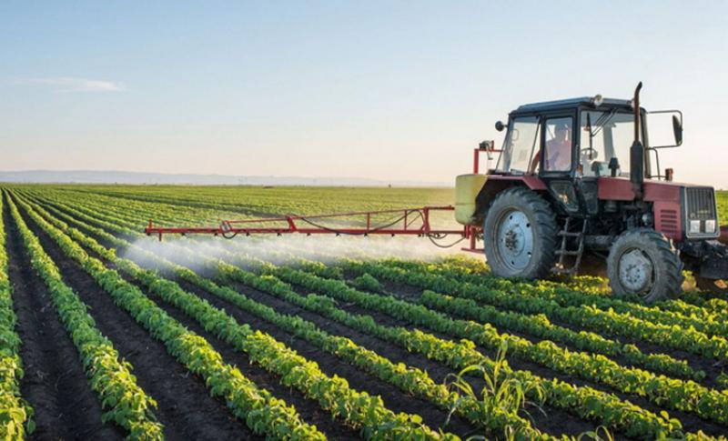 Cionca: Depuneţi proiecte pe agricultură în judeţul Arad!