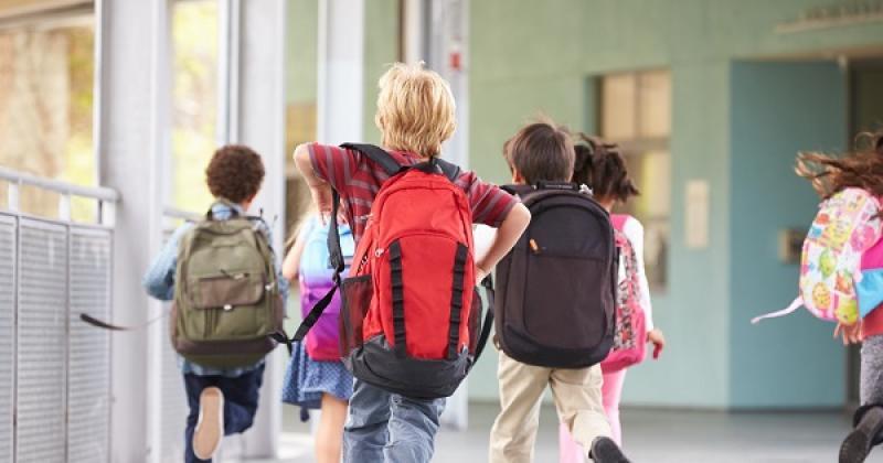 Elevii și preșcolarii intră în VACANȚĂ de vineri 27 octombrie