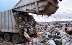 Noua găselniţă a Guvernului:  Taxarea gunoiului menajer în funcţie de resturile aruncate!