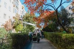 Curăţenia de toamnă a ajuns în cartierul Aurel Vlaicu