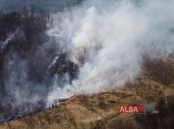 ARDE o pădurea în Apuseni! flăcările care au făcut PRĂPĂD pe zeci de hectare!