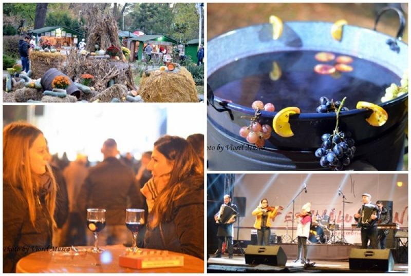 Festivalul Vinului din Arad a debutat cu muzică, mult vin şi voie bună!