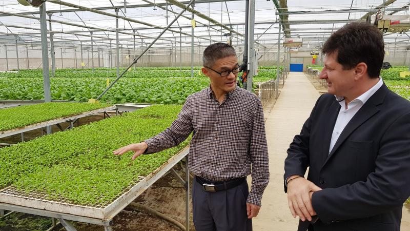 Judeţul Arad, înţelegere economică bilaterală cu Provincia Fujian