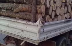 Dosar penal pentru un arădean care transporta lemne tăiate ilegal într-o maşină cu numere false