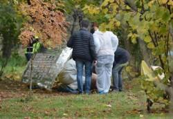 INFIORĂTOR ! Cadavrul unui bărbat, găsit joi dimineața într-un parc. Acesta avea capul zdrobit