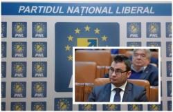 Glad Varga (PNL): Ministerul Apelor şi Pădurilor ignoră criza lemnelor de foc!