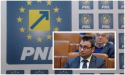 """Glad Varga (PNL): """"Realizarea infrastructurii de alimentare pentru vehicule electrice a fost adoptată tacit în Senat!"""""""