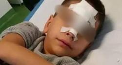 Anchetă la Zădăreni după ce un copil de şase ani, născut în Italia, a fost umilit şi agresat de învăţătoare şi colegi pentru că nu vorbeşte bine limba Română