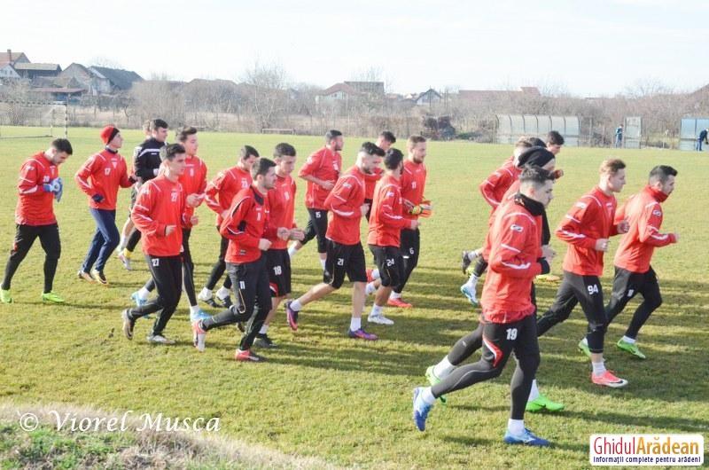 UTA începe seria meciurilor de pregătire, împotriva unei formaţii din Ungaria
